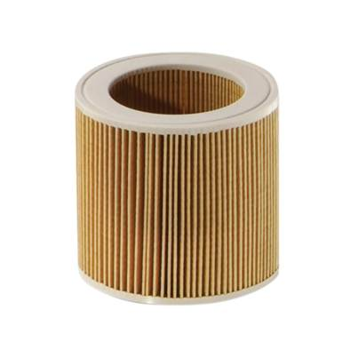Karcher Cartridge Filter For Domestic Vacuum (Single)