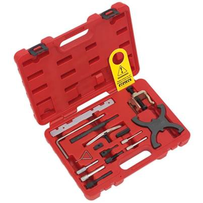 Sealey Tools Diesel/Petrol Engine Setting/Locking Combination Kit - Ford, PSA - Belt/Chain Drive