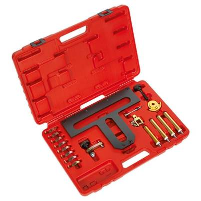 Sealey Tools Petrol Engine Camshaft/Carrier Removal/Installation Kit - BMW 1.8, 2.0 N42/N46/N46T - Chain Drive